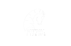 logo cheval-liberte