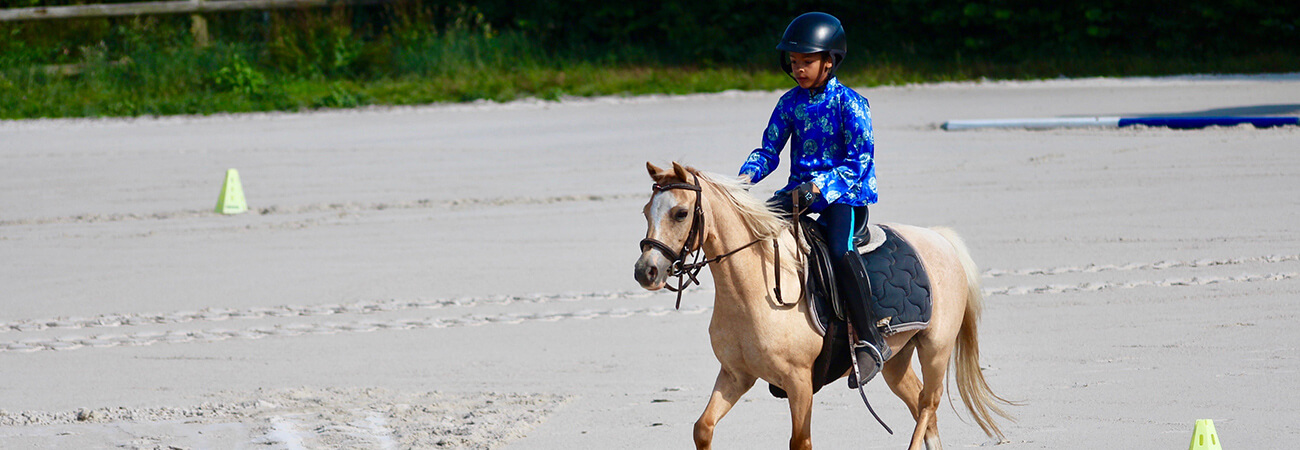 équi-normandie poney-club