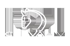 logo cheval-tv
